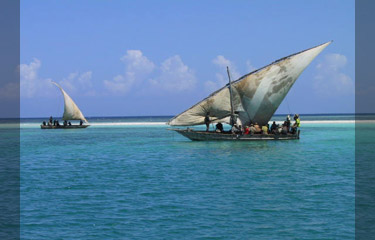 Local sailing dhows